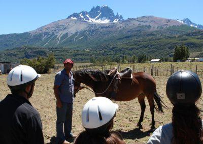 AysenAdventureTrips_Horse02