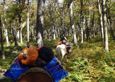 Equestrian_Trips_SenderosPatagonia_Pioneer01